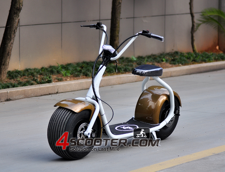 city coco electric scooter 800w electric scooter big. Black Bedroom Furniture Sets. Home Design Ideas